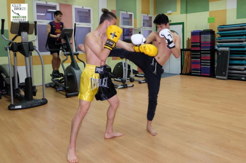 Muay Thai Mollet